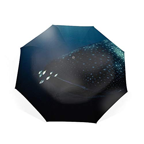 Compact Umbrella,Whale Shark Feeds Automatic Folding Travel Umbrella,Windproof Reinforced Canopy, Ergonomic Non-Slip Handle, Auto Open/Close for One Handed Operation