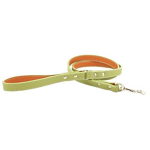 Italian Leather Dog Leash - Green (4' x 3/4