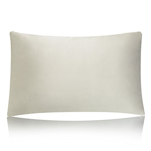 MEILIS Mulberry Silk Pillow Case ,Hypoallergenic and Soft Iv