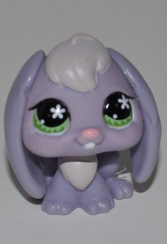 Rabbit #648 (Purple/Grey, Green Eyes) - Littlest Pet
