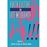 Youth Culture in Late Modernity, , 0803988982