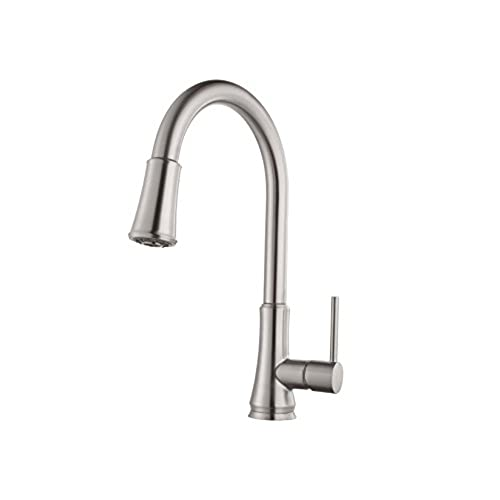 Moen Pfister Kitchen Faucet: Amazon.com
