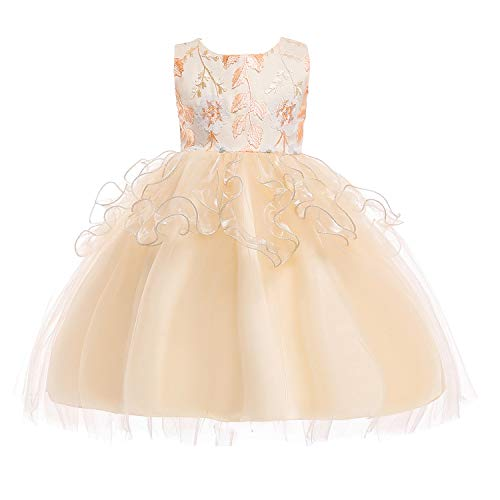 JIANLANPTT Girl Dresses Tulle Lace Party Princess Dress Rose Flower Kids Appliqued Ball Gown Costumes 7-8 Years Champagne 2 -