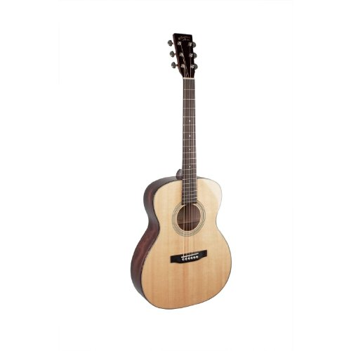 Recording King RO-310 Classic Series 000-Style Acoustic, Adirondack Top (Recording King Classic Series)