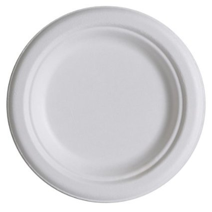 500 counts, Round plates, 10 inches, Biodegradables, Disposable,Compostable 100% Sugarcane (Eco Friendly) - For Birthday party (Microwave Safe) platos desechables ecologicos microondas redondos