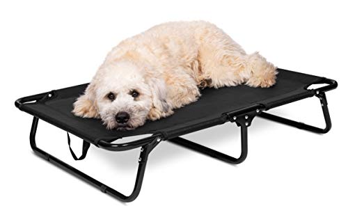 BIRDROCK HOME Elevated Dog Bed Cot – 35 x 24″ – Small to Medium Dogs – Folding Pet Furniture – Lightweight & Portable – Easy Setup- Cool Breathable Mesh – Indoor or Outdoor Use