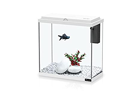 Aquatlantis Acuario Kit 30 blanco