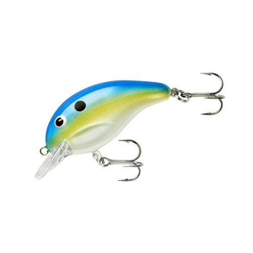 Bandit Series 100 Neon Shad 2 in