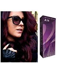 Berina Hair Professional Permanent Hair Color Cream (A 14) Dark Brown Violet Color - Brown Violet
