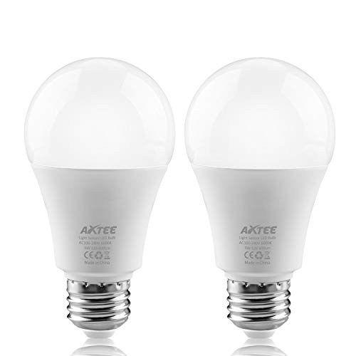 Smart light bulb with Dusk to dawn Led Light bulbs