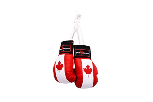 Pro Impact Mini Boxing Gloves - Miniature Punching Gloves - Holiday Christmas Ornament - Hanging Decoration or Souvenir Display - for Home & Car Use - 1 Pair Canadian ()