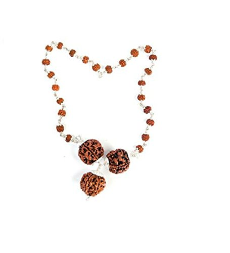 rudraksha-combination-for-career-3712-mukhi-nepal-certified