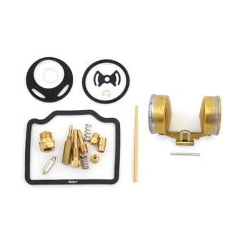 Amazon.com: Kit de reconstrucción de carburador de lujo con ...