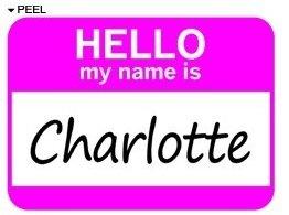 Amazon.com: Hello My Name Is Charlotte - Window Bumper ...