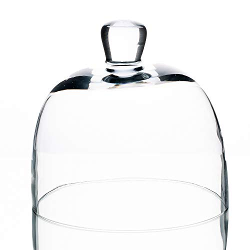 Richland Francie Bell Jar Glass Cloche