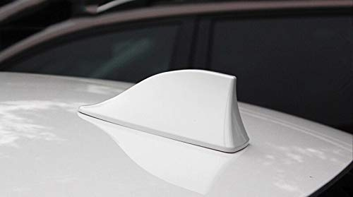 Bianco FIOLTY Signal Accessori Auto Antenna sfin per Honda Accord Crosstour City Fit odissea CRV CRV Civic Accessori