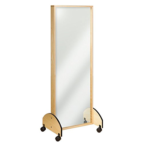 (Physical Therapy Mobile Adult Mirror)