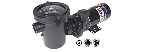 Waterway Plastics 806105180438 1 HP 2-Speed 3450/1725 RPM 115V Above Ground Pool Pump by Waterway Plastics
