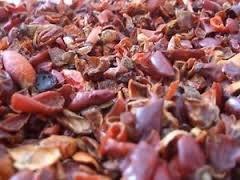 Kombucha Flavor: Organic Dried Rosehips ~ Ravenz Roost herbs