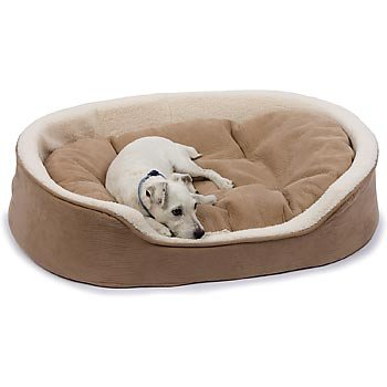 Petco Oval Tan and Cream Lounger Dog Bed, My Pet Supplies