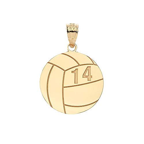 (Sports Charms 10k Yellow Gold Personalized Beach Volleyball Pendant with Your Name and Number)