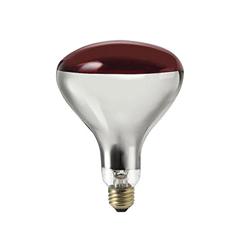 SHANHAI E26 Medium Base Red Heat Lamp Bulb, Incandescent Lights Bulbs with Red Top, Brass Bases for Food Preparation, Restaurants & Hotels - Long Life Span & 5 Filament - 250W, 120V, Pack of 1 (Heating Coil For Truck compare prices)