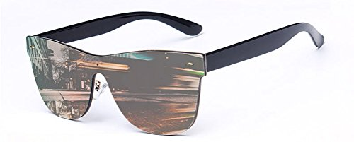 GAMT Wayfarer Sunglasses Integral Mirrored Lens Metal Frame - Mirror Shades