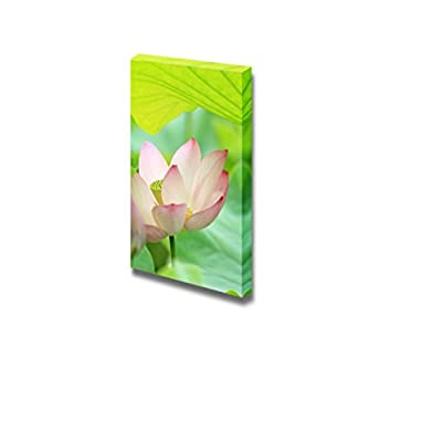 Canvas Prints Wall Art - Blossoming Lotus Flower with Green Lily Pad | Modern Wall Decor/Home Decoration Stretched Gallery Canvas Wrap Giclee Print. Ready to Hang - 16