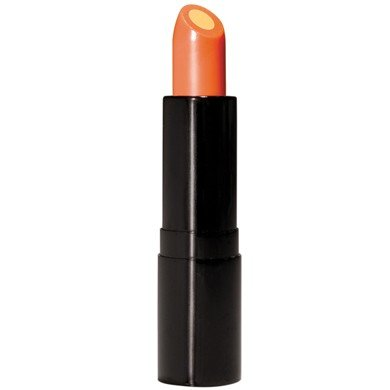 Vitamin C Lip Treatment SPF 15 - Intensive Protection Spf 15 Moisturizer