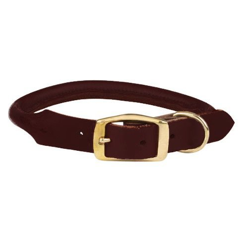 10-12-Inch Casual Canine Rolled Leather Dog Collar, 10 to 12-Inch, Brown