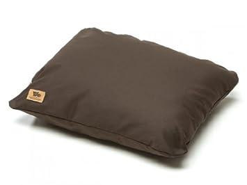 West Diseño de pata de perro de almohada cama, Coffee, XXL: Amazon.es: Productos para mascotas