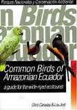 img - for Common Birds Of Amazonian Ecuador: A Guide for the Wide-Eyed Ecotourist book / textbook / text book