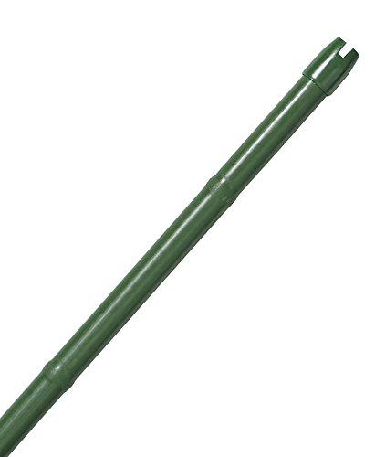 第一ビニール すくすく竹節付 20×2400 B00KYSIQ72