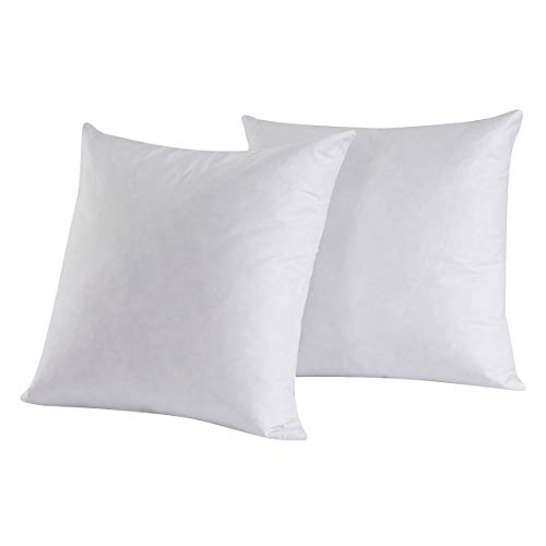 HOMESJUN Set of 2, 95% Feather 5% Down Square Decorative Throw Pillow Insert, 100% Cotton, 22x22 Inch
