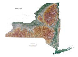 Amazon Com New York State Topographic Wall Map By Raven Maps