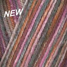 Plymouth Encore Worsted Colorspun Yarn 8003 Cherry Cola
