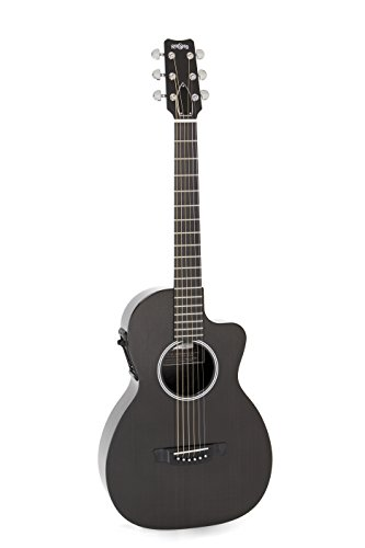 Rainsong P12 6-String Parlor with 12-Fret NS Neck Pewter finish
