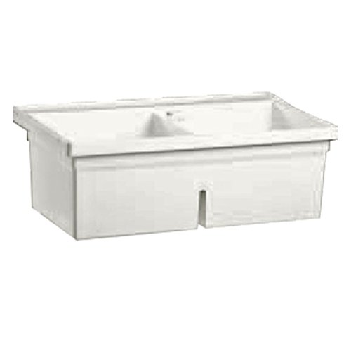 Twin Bowl Sink (Fiat LTDII100 Molded Stone Wall-Mounted Twin Laundry Tub)