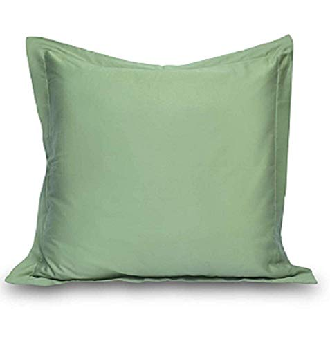 - Prince Lionheart Inc Solid Pattern 100% Egyptian Cotton 2 Piece Pillow Shams 26
