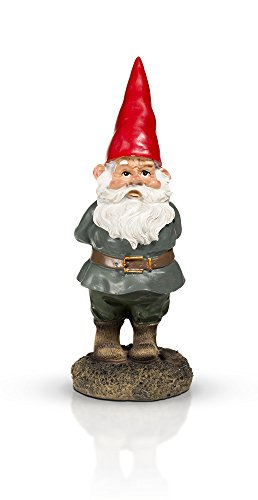 THE Garden Gnome 10'' by GardenGnomeWorld.com