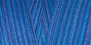 Star Thread V38-848 3-Ply 30wt T-35 Cotton Quilting & Craft Variegated Thread, 1200 yd, Blue Pacific (B003Y79PES) | Amazon price tracker / tracking, Amazon price history charts, Amazon price watches, Amazon price drop alerts