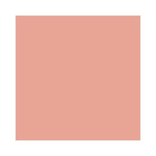 DecoArt Americana Acrylic Paint, 2-Ounce, Coral Blush