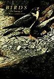 img - for Birds Paintings Terance James Bond book / textbook / text book