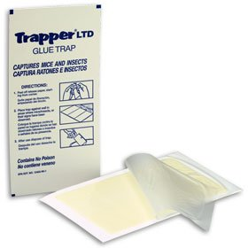 Trapper LTD Insect-mouse Glue Boards/12 boards