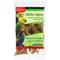Hartz Mountain 3270097605 Nutrition Millet Spray, My Pet Supplies