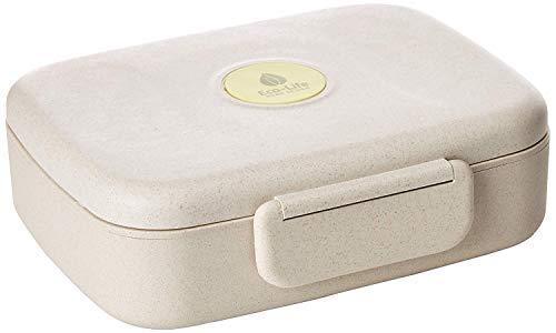 Buy bento box for adults