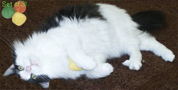 Cat Claws Terry Balls (Catnip Terry Cat)