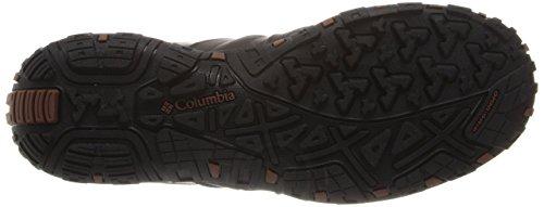 Columbia Woodburn Ii Waterproof, Zapatillas de Senderismo para Hombre, Marrón (Cordovan/ Cinnamon), 43 EU