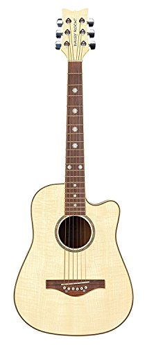 Daisy Rock 6 String Acoustic Guitar Bleach Blonde DR6261-A-U for sale  Delivered anywhere in USA