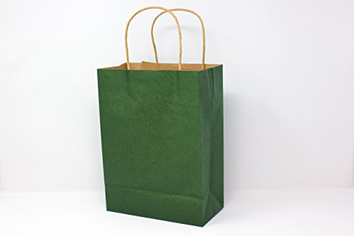 Coloured Paper Gift Bags With Handles - 9